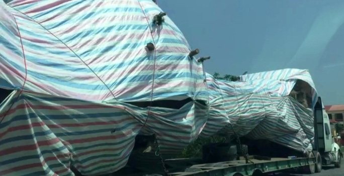 Bắt cây quái thú  lọt nhiều trạm CSGT miền Trung - Ảnh 1.