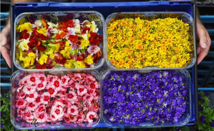 Hoa organic ăn được - Ảnh 1.