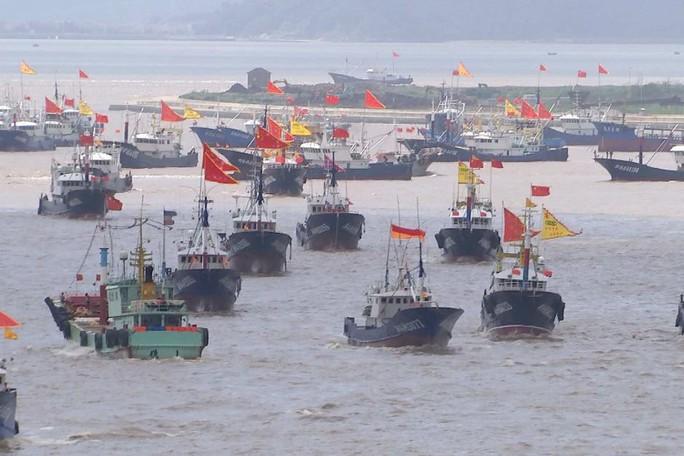 Siêu tàu Trung Quốc vét sạch cá thế giới - Ảnh 1.