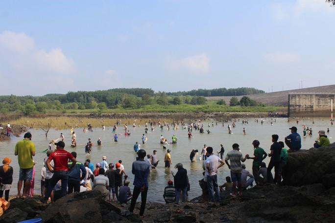Cá mắc kẹt đầy chân đập hồ thủy điện Trị An - Ảnh 2.