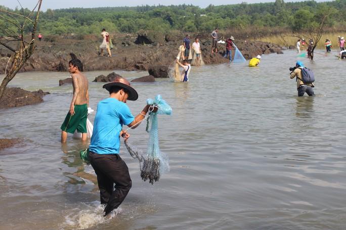 Cá mắc kẹt đầy chân đập hồ thủy điện Trị An - Ảnh 8.