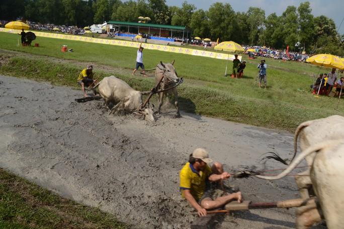 Thót tim với những bước chạy dũng mãnh tại giải đua bò Bảy Núi - Ảnh 9.