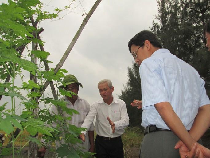 Nông nghiệp hữu cơ được nhà nước hỗ trợ cao - Ảnh 1.