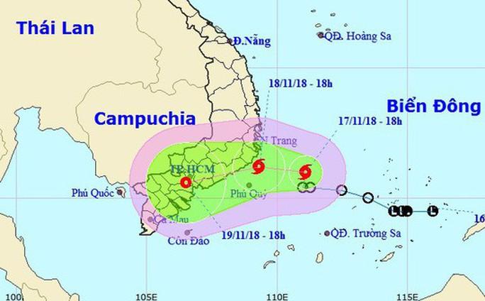UBND TP HCM chỉ đạo khẩn ứng phó bão số 8 - Ảnh 1.