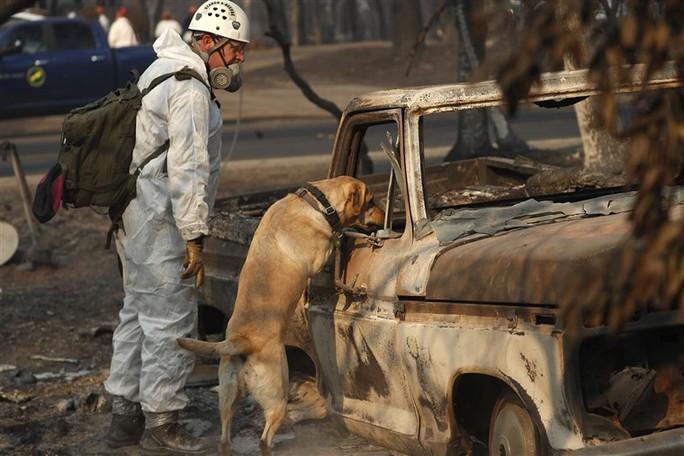Cháy rừng California: Hơn 1.000 người mất tích, khói độc phát tán hàng trăm km - Ảnh 1.