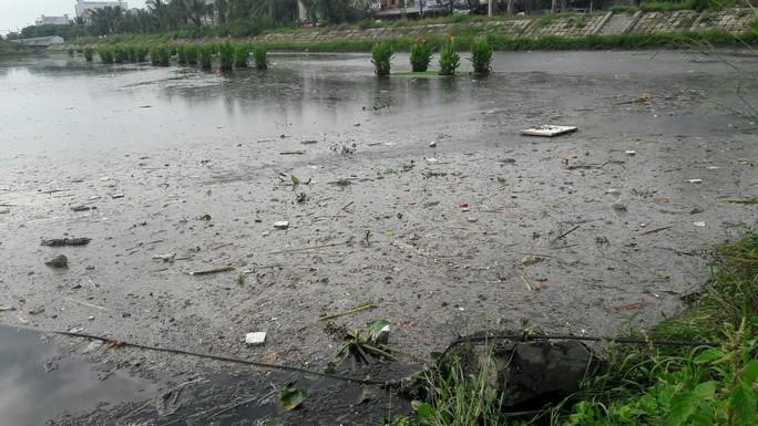 Đà Nẵng: Dân kêu trời vì kênh, hồ điều tiết gây ô nhiễm triền miên - Ảnh 4.