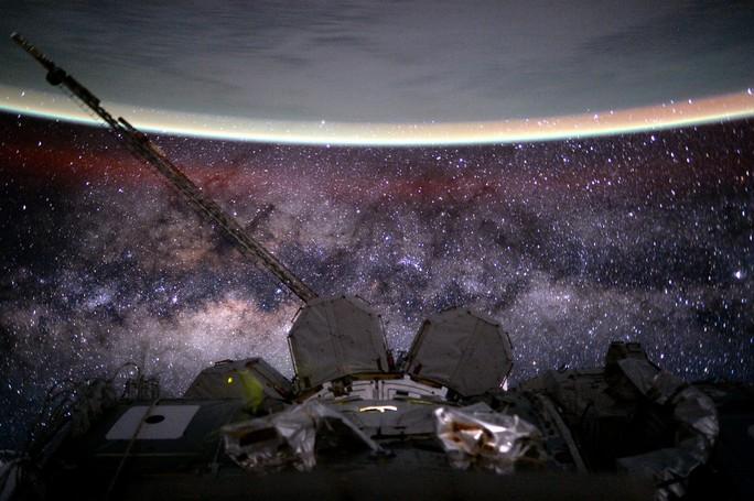 Gửi sâu lên vũ trụ để nghiên cứu thuốc trường sinh bất lão - Ảnh 1.