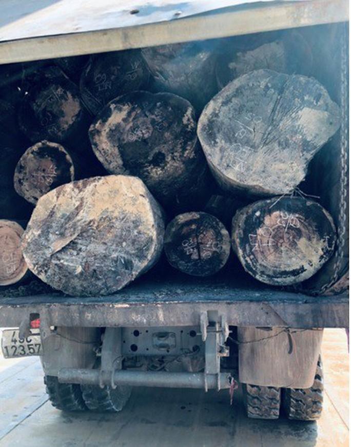 Bắt 3 xe tải chở gỗ lậu giữa ban ngày - Ảnh 2.