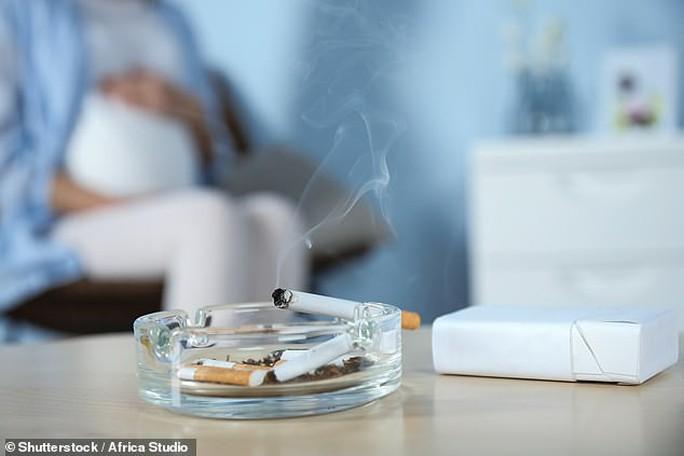 Thay đổi đáng sợ ở thai nhi nếu mẹ nhiễm khói thuốc lá - Ảnh 1.