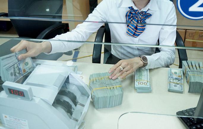 Sẽ siết chặt đối tượng vay USD để chống đô la hóa - Ảnh 1.