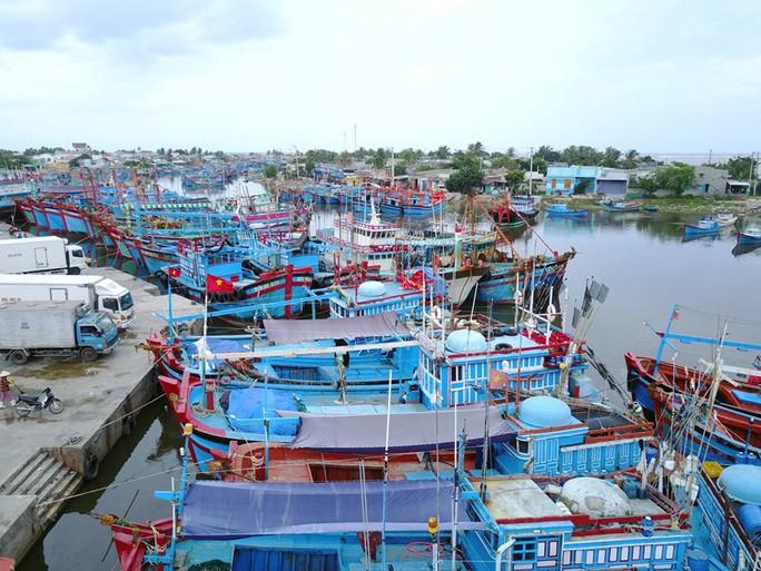 Ninh Thuận tất bật ứng phó với bão số 9 - Ảnh 3.