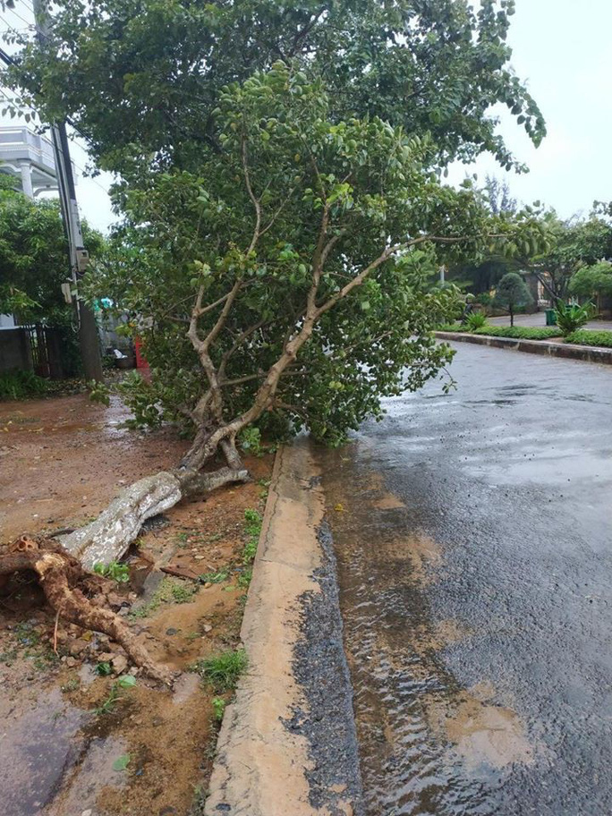 Khuya nay, bão số 9 sẽ đổ bộ từ Bình Thuận đến Bến Tre - Ảnh 2.