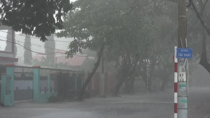 Ảnh hưởng bão số 9, Cần Giờ mưa lớn, cây xanh bật gốc, nhà tốc mái - Ảnh 4.