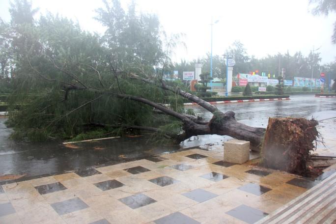 Bão số 9 đã vào Bà Rịa - Vũng Tàu, mưa rất to, cây ngã đổ, tàu chìm - Ảnh 7.