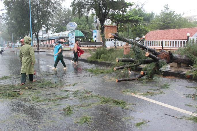 Bão số 9 đã vào Bà Rịa - Vũng Tàu, mưa rất to, cây ngã đổ, tàu chìm - Ảnh 13.