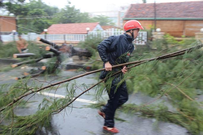 Bão số 9 đã vào Bà Rịa - Vũng Tàu, mưa rất to, cây ngã đổ, tàu chìm - Ảnh 12.