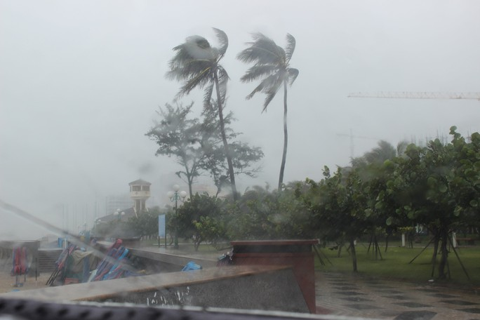 Bão số 9 đã vào Bà Rịa - Vũng Tàu, mưa rất to, cây ngã đổ, tàu chìm - Ảnh 10.