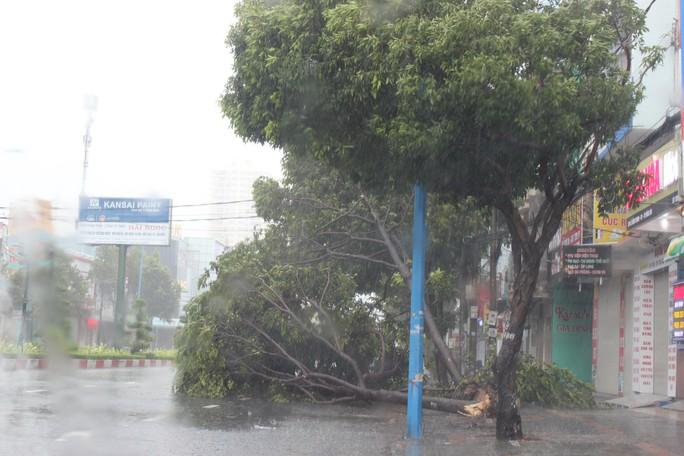 Bão số 9 đã vào Bà Rịa - Vũng Tàu, mưa rất to, cây ngã đổ, tàu chìm - Ảnh 8.