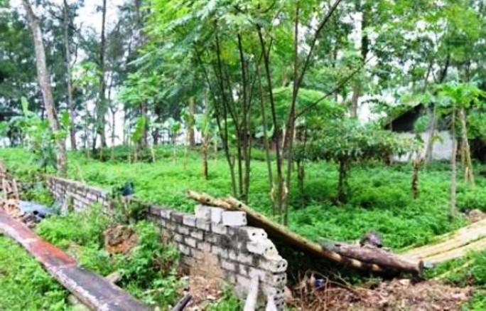 Hàng loạt cán bộ TP Sầm Sơn bị kỷ luật do sai phạm quản lý đất đai - Ảnh 1.