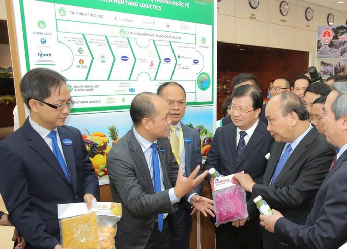 Thủ tướng Nguyễn Xuân Phúc khen ngợi bưởi Phúc Trạch - Ảnh 3.
