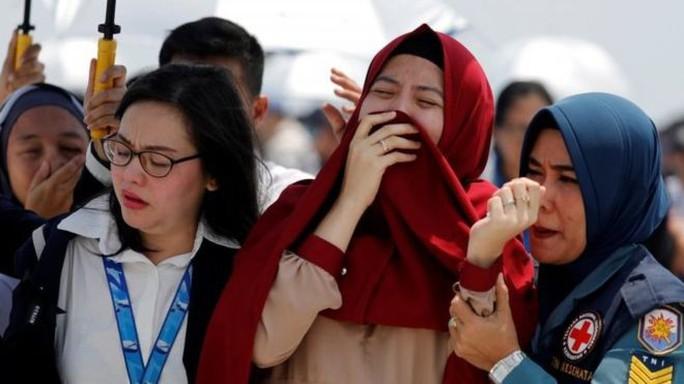 Cuộc chiến giữa người và máy trong những phút cuối vụ rơi máy bay Lion Air - Ảnh 4.