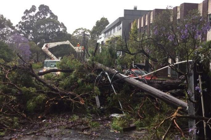 Úc: Mưa 1 giờ bằng cả tháng, đường phố Sydney biến thành sông - Ảnh 6.