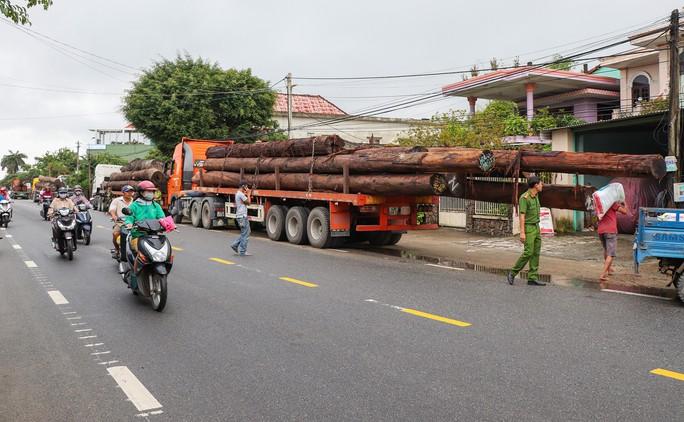 Không có giấy tờ, 4 xe container chở cả trăm mét khối gỗ khủng bị bắt giữ - Ảnh 1.