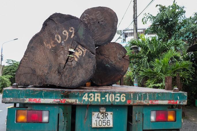 Không có giấy tờ, 4 xe container chở cả trăm mét khối gỗ khủng bị bắt giữ - Ảnh 3.