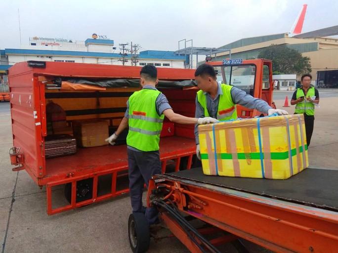 Phát hiện 2 nhân viên bốc xếp ở sân bay Tân Sơn Nhất vi phạm - Ảnh 1.