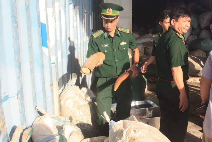 Chủ tịch Đà Nẵng khen thưởng vụ bắt giữ hơn 10 tấn ngà voi nhập lậu - Ảnh 2.