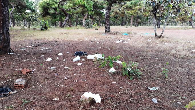 Trước ngày lễ hội, đồi cỏ hồng bị bôi bẩn bởi rác thải, kim tiêm - Ảnh 3.