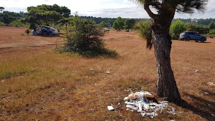 Trước ngày lễ hội, đồi cỏ hồng bị bôi bẩn bởi rác thải, kim tiêm - Ảnh 1.
