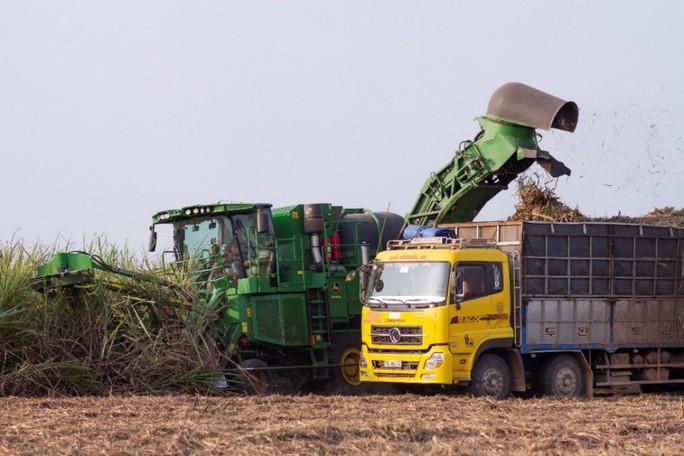 Đồng hành hỗ trợ, duy trì lợi nhuận cho nông dân - Ảnh 2.