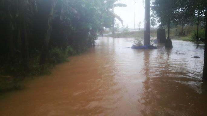 Đà Nẵng: Hòa Liên đang bị ngập sâu hơn 1 m - Ảnh 16.