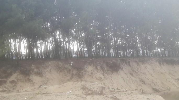 Hơn 3 km bờ biển Đà Nẵng tiếp tục sạt lở nặng - Ảnh 9.