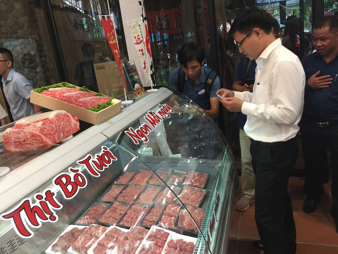 Bò Nhật đổ vào Việt Nam - Ảnh 1.