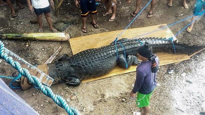 Bắt cá sấu nặng nửa tấn ăn thịt người - Ảnh 2.