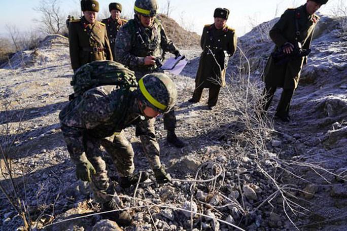 Triều Tiên dội nước lạnh vào Mỹ - Ảnh 1.