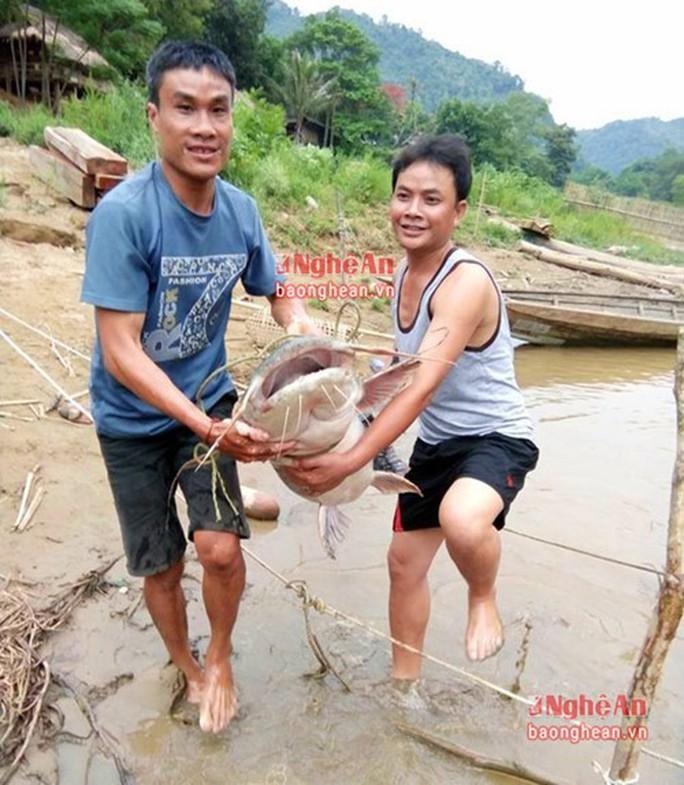 Bí ẩn miền Tây xứ Nghệ: Loài cá nặng hàng yến, dài cả mét - Ảnh 24.