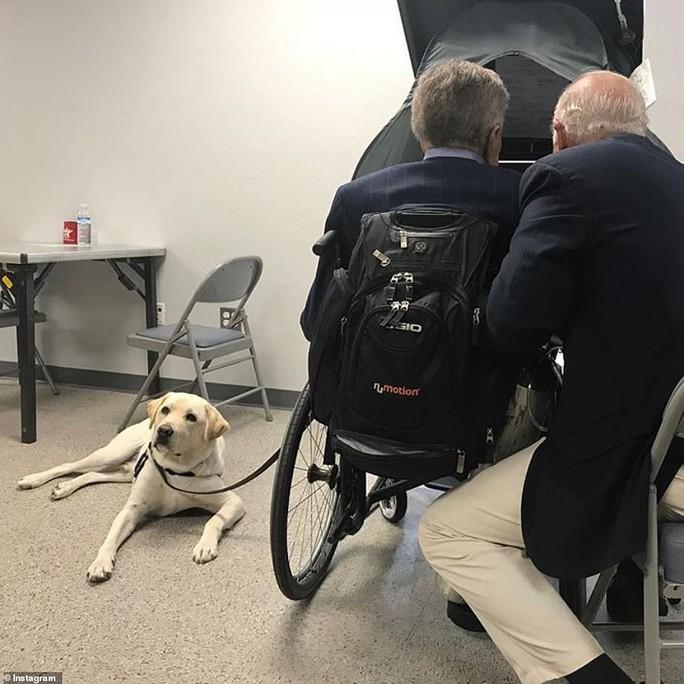"""Chuyện xúc động về chó cưng của cố Tổng thống Bush """"cha"""" - Ảnh 2."""