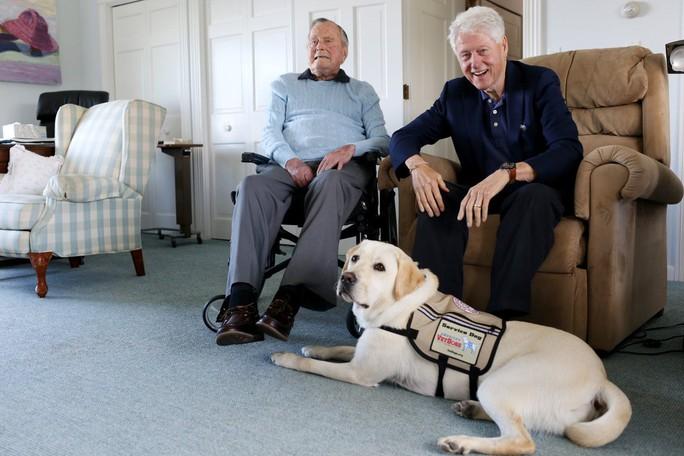 """Chuyện xúc động về chó cưng của cố Tổng thống Bush """"cha"""" - Ảnh 4."""