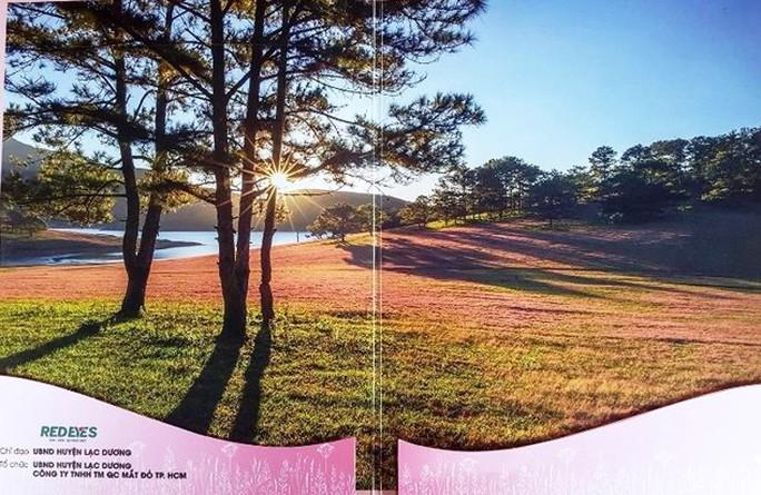 Xài chùa hình ảnh cỏ hồng: Ban tổ chức xin lỗi vì thiếu... kinh nghiệm - Ảnh 1.