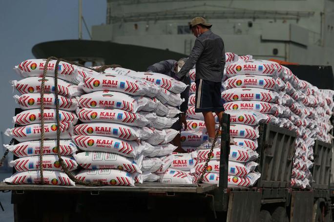 Việt Nam kiên trì hội nhập toàn diện - Ảnh 1.