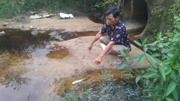 """Lãnh đạo huyện Phú Quốc lên tiếng việc dân """"tố"""" nhà máy rác xả nước thải ra biển - Ảnh 2."""