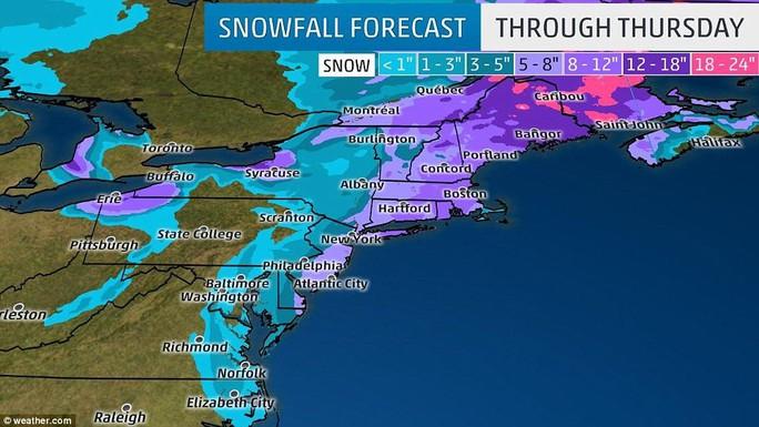 Nước Mỹ trong mờ mịt mưa tuyết - Ảnh 15.