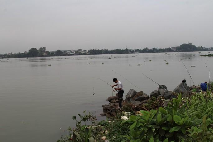 Dự án lấn sông Đồng Nai bây giờ ra sao? - Ảnh 5.