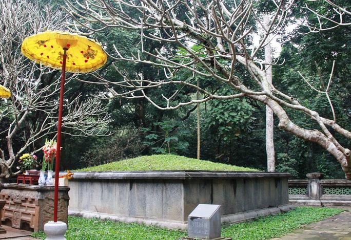 """Kỳ bí cây ổi """"cứ gãi là cười"""" bên lăng mộ vua Lê Thái Tổ - Ảnh 2."""