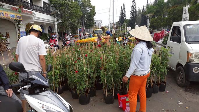 Người bán hoa kiểng ở miền Tây thà chở về chứ không bán rẻ như cho - Ảnh 3.