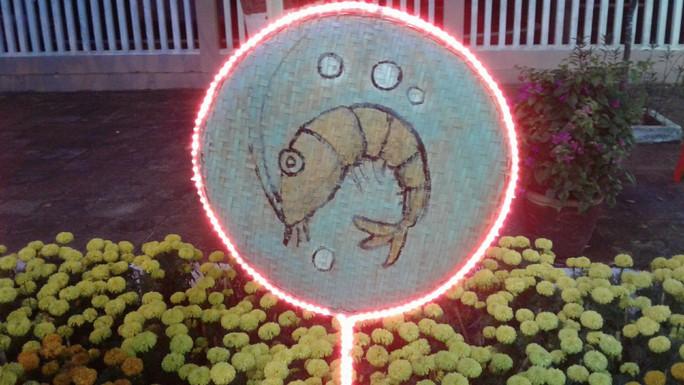 """Ngắm đường hoa Xuân """"hải sản"""" đặc sắc ở Côn Đảo - Ảnh 27."""