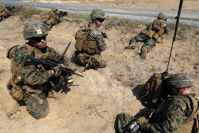 Cận cảnh Mỹ và 28 nước châu Á tập trận Hổ mang vàng - Ảnh 8.